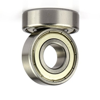 Ultra High Temperature Bearing 6208-2z/Va201 for Food Machinery