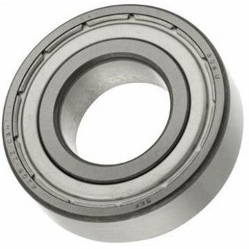 Skate Skateboard Bicycle Ceramic Stainless Steel Deep Groove Ball Bearing of Ss608 Ss609 Ss6204 Ss625 Ss695 (SS693 SS699 SS688 SS685 SS6201 SS6009 SS626)