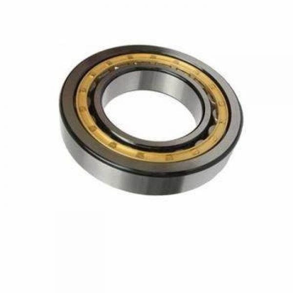 Ceramic Stainless Steel Ball and Roller Bearing Ss608 Ss609 Ss625 Ss626 Ss688 Ss695 Ss6301 Ss6302 (SSUC204 SSUC206 SSUC207 SSUC208 SSUC222) #1 image